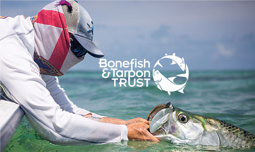work for bonefish and tarpon trust