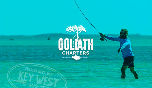 work for goliath charters